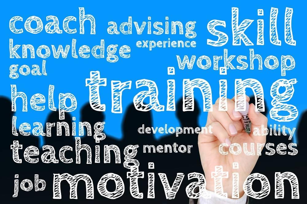 Bild mit verschieden Begriffen der Suchmaschinenoptimierung zum Thema SEO Seminar & Schulung bundesweit mit den SEO Optimierung Experten