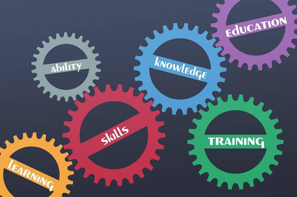 Zahnräder mit Begriffen rund um unsere Online Marketing Schulung im SOE-Bus