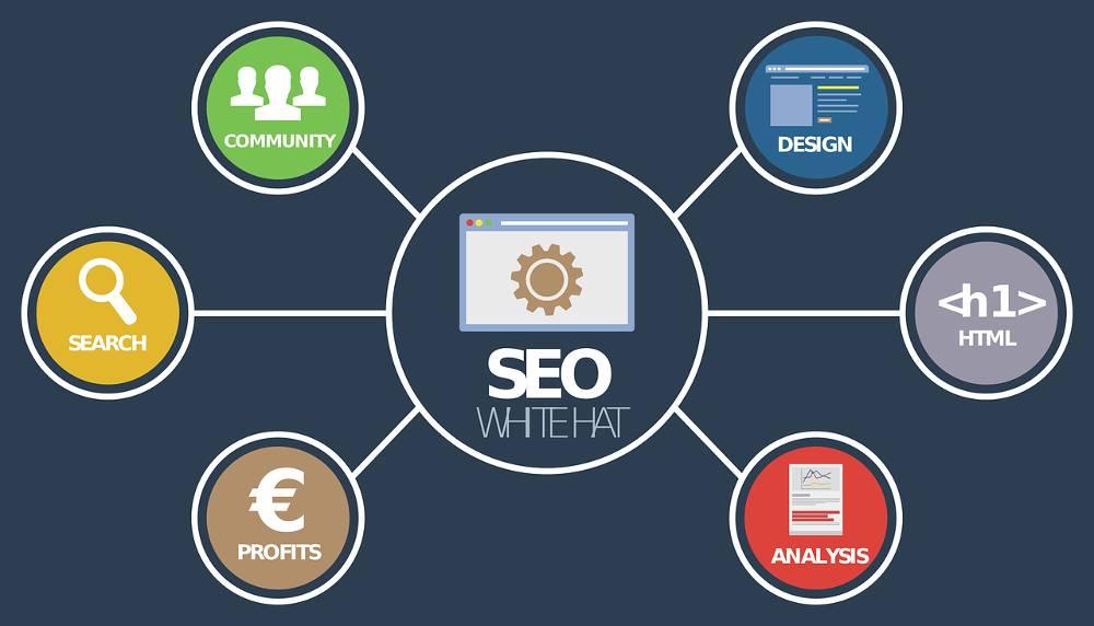 Grafik mit Begriffen aus dem Website-Check zum Thema kostenlose SEO-Analyse